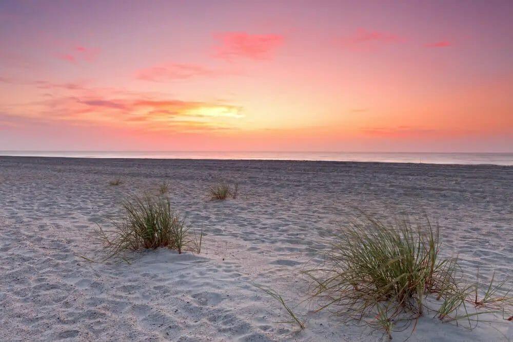 Fernandina Beach Things To Do